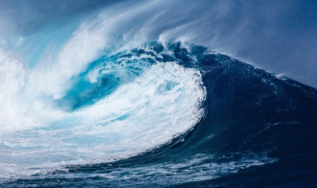 Der digitale Tsunami kommt - wie sie sich für die Digitalisierung wappnen