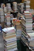 Bücher lesen bildet